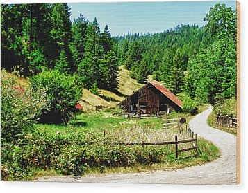 Nw California Country Road Wood Print by Frank Feliciano