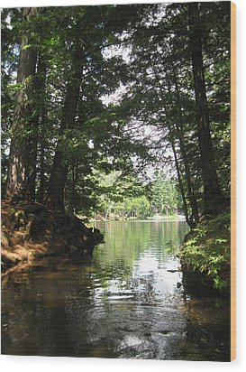Ny Wildlife Wood Print by Lali Partsvania
