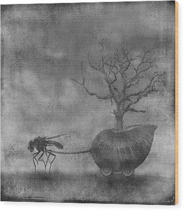 o5 Wood Print by Simon Siwak