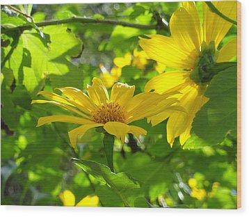 Oahu Sunshine Wood Print