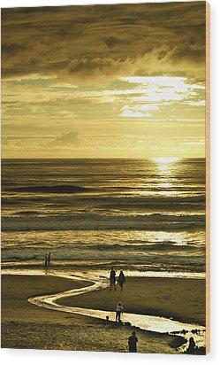 Ocean Play 2 Wood Print by Dale Stillman
