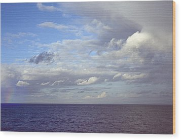 Ocean View Wood Print by Mark Greenberg