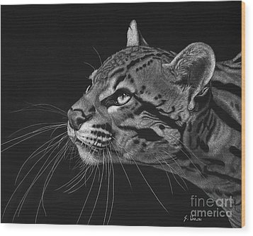 Ocelot Wood Print by Sheryl Unwin