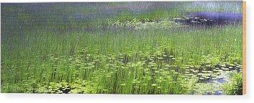 Ode To Monet Wood Print by Bob Retnauer