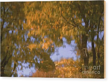 Ode To Monet Wood Print by Janeen Wassink Searles