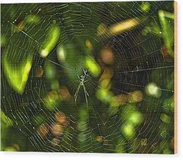 Oh The Web We Weave Wood Print by Barbara Middleton