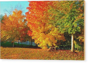Ohio Autumn Maples Wood Print by Dennis Lundell