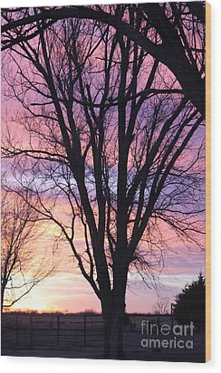 Oklahoma Sunset 1 Wood Print