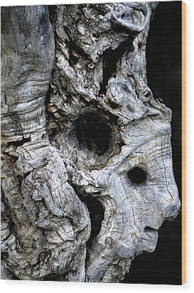 Old Ancient Olive Tree Spain Wood Print by Colette V Hera  Guggenheim