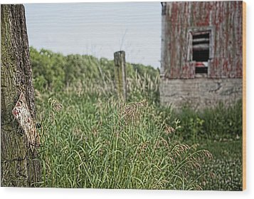 Wood Print featuring the photograph Old Barn 15 by John Crothers