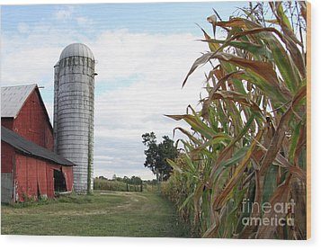 Wood Print featuring the photograph Old Barn And Silo by Denise Pohl