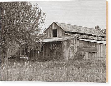 Old Barn In Sepia  Wood Print by Connie Fox