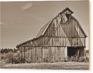 Old Barn In Sepia Wood Print by Douglas Barnett