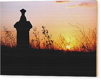 Old Cemetary In A Farm Field Wood Print by Kimberleigh Ladd