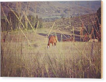 Old Country Road Wood Print by Sarai Rachel