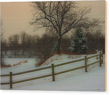 Wood Print featuring the photograph Old Fashiion Winter by Edward Peterson
