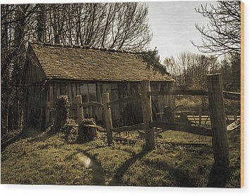 Old Fashioned Shed Wood Print by Dawn OConnor
