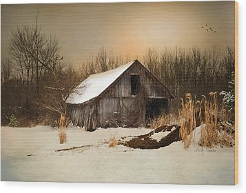 Old Homestead Barn Wood Print by Mary Timman