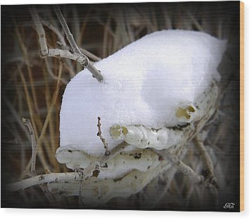 Wood Print featuring the photograph Old Man Winter's Hand by Michelle Frizzell-Thompson
