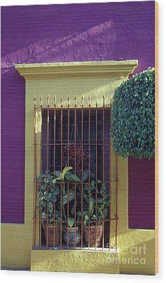 Wood Print featuring the photograph Old Mazatlan Window by John  Mitchell