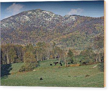 Old Rag Mountain - Shenandoah National Park - Virginia Wood Print by Brendan Reals