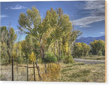 Old Ranch Near Bishop Wood Print by Michele Cornelius