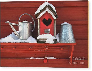Old Red Birdhouse Wood Print by Sandra Cunningham