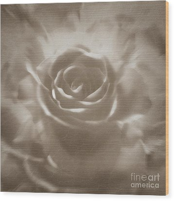 Wood Print featuring the digital art Old Rose by Johnny Hildingsson