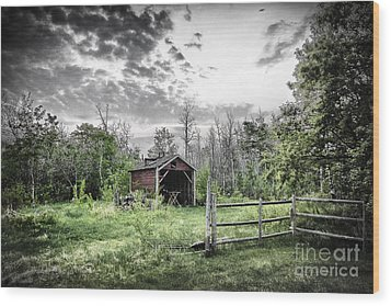 Old Shed Wood Print by Lori Frostad