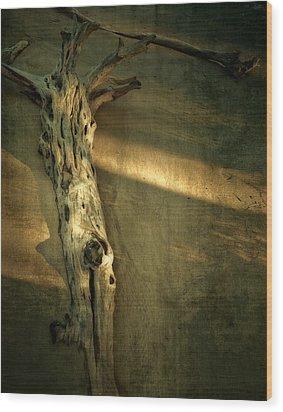 Old Tree In Sand Wood Print by Mario Celzner