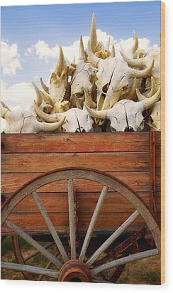 Old Wagon Full Of Buffalo Skulls Wood Print by Garry Gay