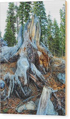 Old Warrior Wood Print by Donna Blackhall