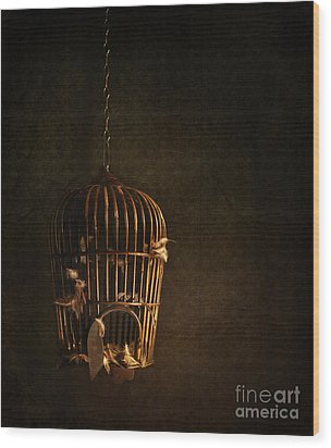 Old Wooden Bird Cage With Feathers Wood Print by Sandra Cunningham