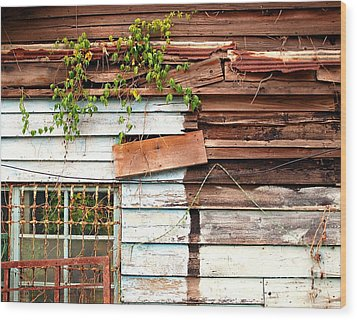 Old Wooden Shack Wood Print by Yali Shi