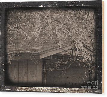 Oldshed Wood Print by Tammy Herrin