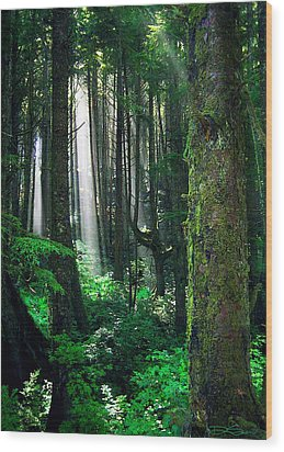 Olympic Forest Wood Print by Ric Soulen
