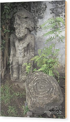 Ometepe Sculptures Nicaragua Wood Print by John  Mitchell