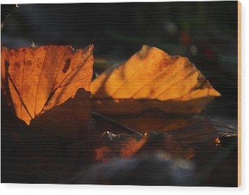 On Dark Seas Wood Print by Odd Jeppesen