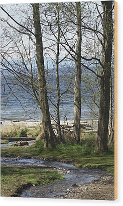 Wood Print featuring the photograph On Puget Sound by Jerry Cahill