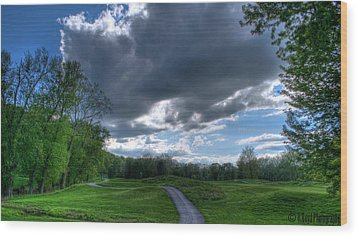 On The Course 3 Wood Print by Heather  Boyd