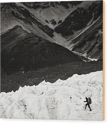 On The Glacier Wood Print by Konstantin Dikovsky