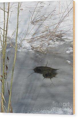 On The River. Heart In Ice 02 Wood Print by Ausra Huntington nee Paulauskaite