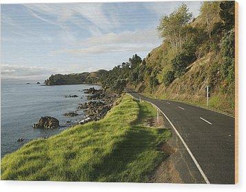 On The Road Around The Coromandel Wood Print by Dawn Kish
