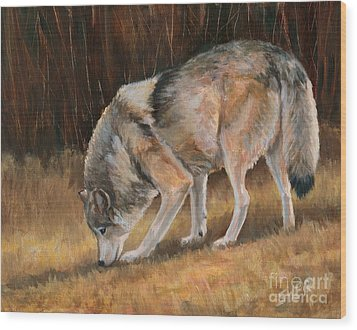 Wood Print featuring the painting On The Trail - Wolf by Sheri Gordon