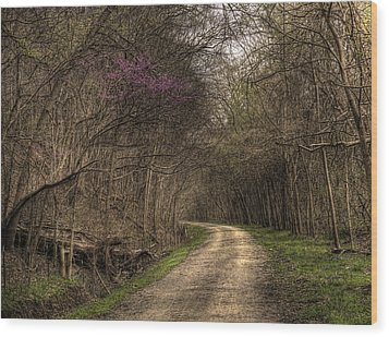 On This Trail Wood Print by William Fields