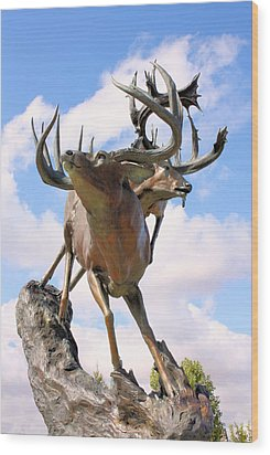 On Top Of The World Wood Print by Kristin Elmquist