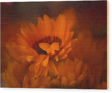 Once Radiant Wood Print by Lynn Wohlers