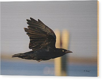 One Black Bird Wood Print by Roena King