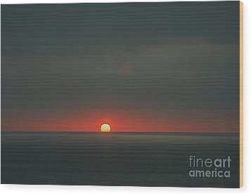 Wood Print featuring the photograph One Day At The Time by Nicola Fiscarelli