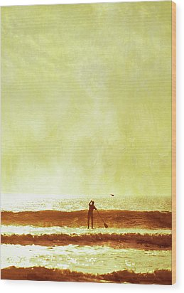 One Man And His Gull Wood Print by s0ulsurfing - Jason Swain